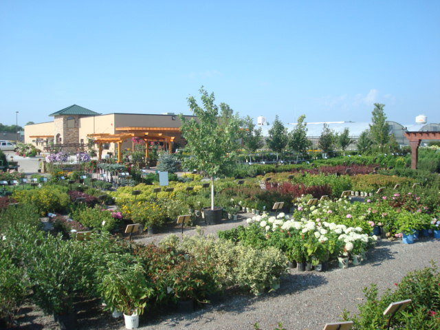 colorful-seasons-nursery