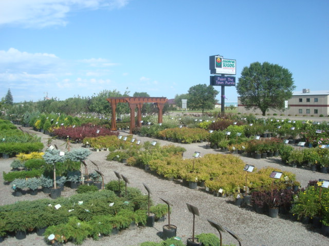 Plant and Tree Nursery
